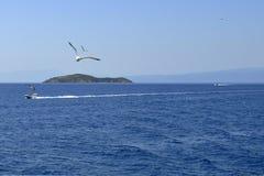 海、海鸥和小船 免版税库存照片