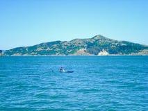海上的划皮船单一的人 免版税库存图片