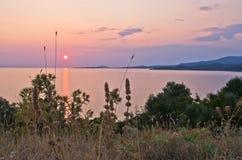 海上的日落用在前景的一些地中海草本在Sithoniasea和一座圣洁山Athos在背景中 免版税库存照片