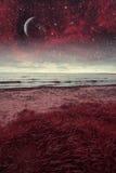 海上的红色夜 免版税库存照片