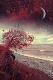 海上的红色夜 库存图片