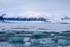 海冰和冰川,斯瓦尔巴特群岛 免版税图库摄影