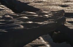 海冰的形式 库存照片