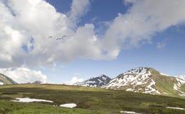 海切尔山口在夏天 免版税库存照片