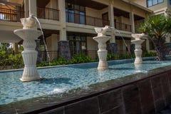 海南屯昌天湖半岛俱乐部大道丑恶的鸭子喷泉 库存图片