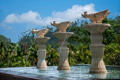海南屯昌天湖半岛俱乐部大道丑恶的鸭子喷泉 库存照片