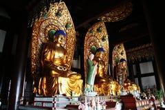 海南nanshan萨尼亚寺庙 库存图片