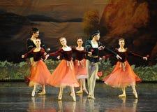 海员和玫瑰色女孩芭蕾天鹅湖 库存照片