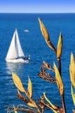 海和一条白色游艇 免版税库存照片