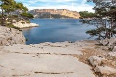海和杉树在Calanques 免版税图库摄影