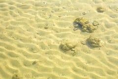 海和沙子 库存图片