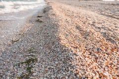 海和波浪的海岸 库存照片