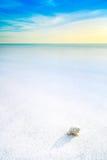 海在一个白色热带海滩的软体动物壳在蓝天下 免版税库存图片