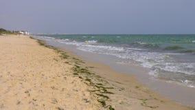 海在沙滩背景挥动 飞溅水波在海洋岸 股票视频