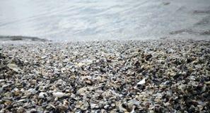 海在海水附近轰击 免版税图库摄影