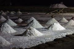 海在盐沼的盐小山 图库摄影