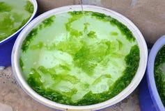 海在水池的lattuce饲养 免版税库存照片