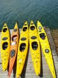 海在巴港,缅因划皮船准备好游人 库存照片