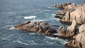 海场面,智利 影视素材