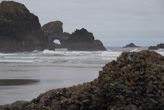海堆积H 库存照片