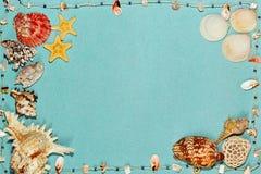 海壳和星在蓝绿色背景钓鱼 免版税库存图片