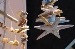 海壳和木海星在海洋纪念品店在Zandv 库存照片