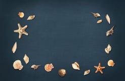 海壳和海星 贝壳框架在黑板背景的 平的位置,顶视图 库存图片