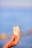海壳在被弄脏的蓝色背景海的妇女手上 免版税图库摄影