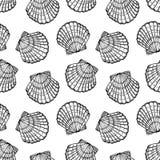 海壳无缝的传染媒介样式 图库摄影