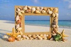 海壳沙子框架海滩概念 免版税库存图片
