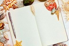 海壳围拢的被打开的空白的笔记本 库存图片