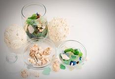 海小卵石和壳在玻璃容器 免版税库存照片