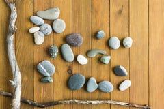 海小卵石和漂流木头 库存图片