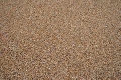 海小卵石纹理 小多彩多姿的小卵石石头 接近的海滩石头表面 库存照片