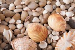 海小卵石背景,自然海滨石头 免版税库存图片