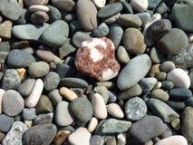 海小卵石 免版税库存照片