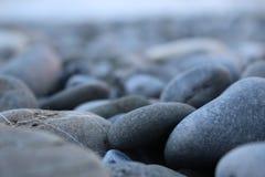 海小卵石 库存图片