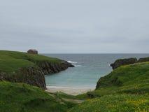 海小条在两座绿色山之间的与天际和地平线,黄色花 免版税图库摄影