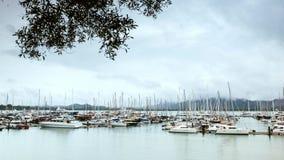 海小游艇船坞在雨中 库存图片