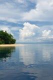海岛掌上型计算机海运热带天空的结构树 免版税图库摄影