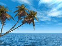 海岛掌上型计算机 免版税库存图片