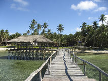 海岛散步siargao热带木 免版税图库摄影
