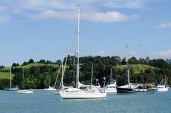 海岛新西兰海湾的Opua小游艇船坞  免版税库存照片