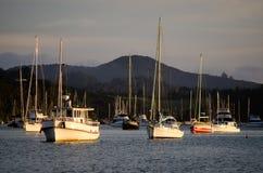 海岛新西兰海湾的Opua小游艇船坞  图库摄影