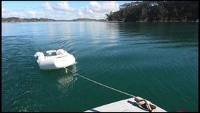 海岛新西兰海湾的Roberton海岛  影视素材