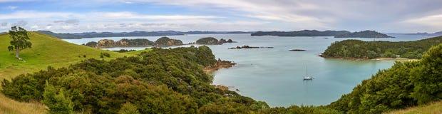 海岛新西兰海湾 库存照片
