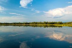 海岛湖公园 库存图片