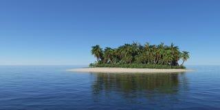 海岛热带的棕榈树 免版税库存图片