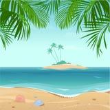 海岛热带的棕榈树 库存照片