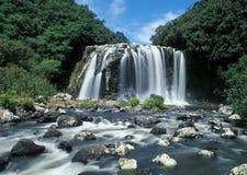 海岛留尼汪岛瀑布 免版税图库摄影